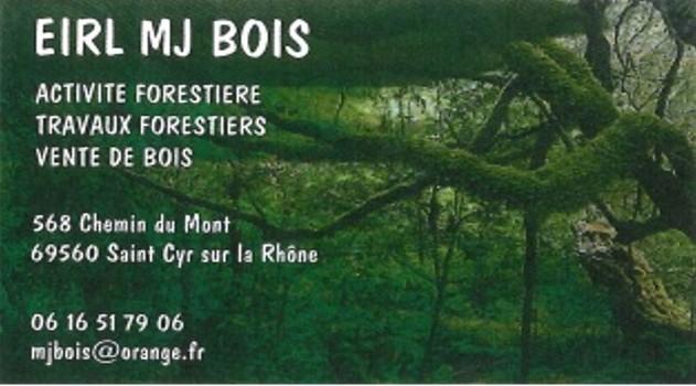 Carte de visite MJ BOIS
