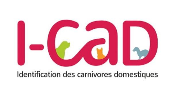 Semaine Nationale de l'Identification des chiens et des chats du 8 au 14 juin